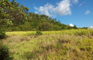 Picture of Lot 56 Yakapari-Seaforth Road, Mount Jukes QLD 4740