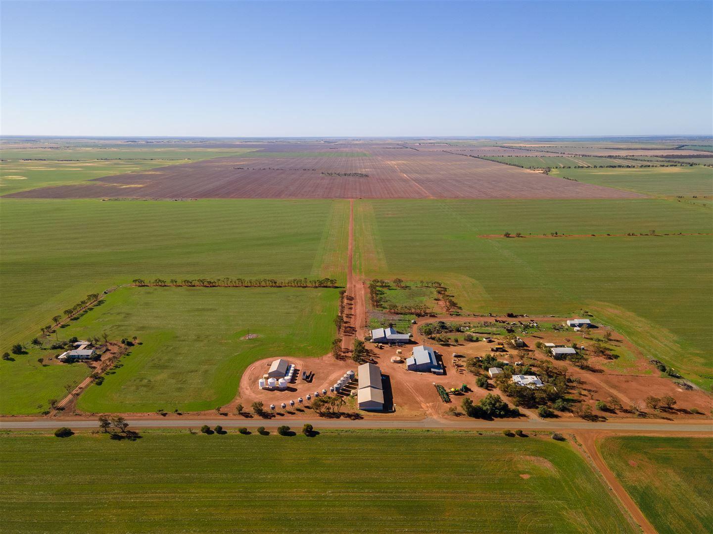Gurrady Farms, Yuna WA 6532, Image 1