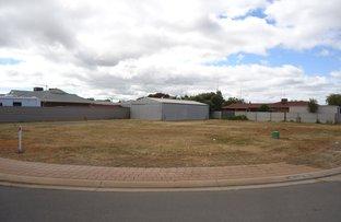 9 Kaeleen Court, Port Pirie SA 5540