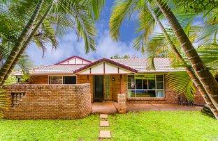 Picture of 28 Jane St, Palmwoods QLD 4555