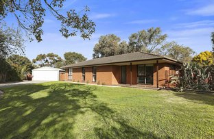 Picture of 11 Poplar Court, Belmont VIC 3216