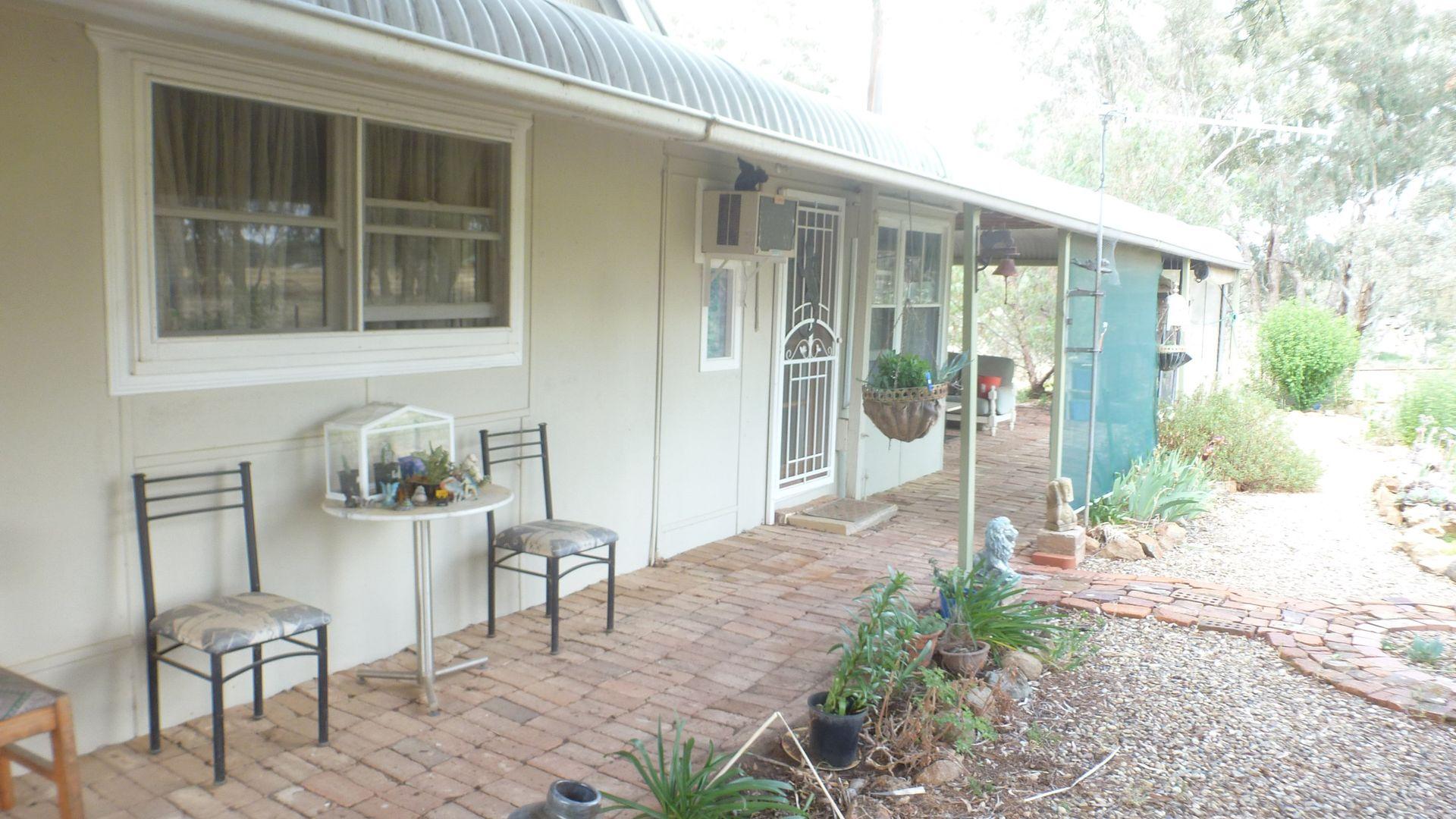 100 Swamp Road, Murringo NSW 2586, Image 1