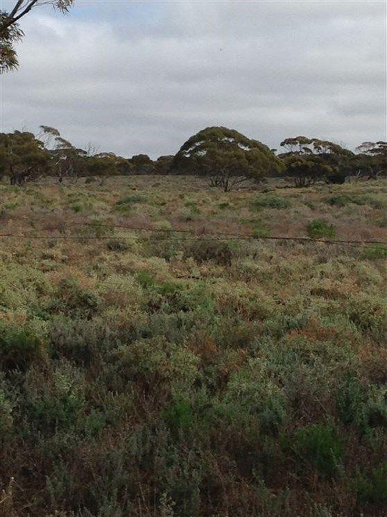 Lot 91 Foote Road, Eudunda SA 5374, Image 1