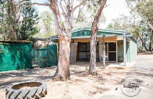 Picture of 605 Bairstows Lane, Gilgandra NSW 2827