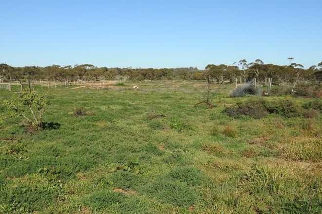 Picture of Lot 2 O'Connor Street, BALRANALD NSW 2715