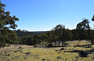Deer Park 2106 Baldersleigh Road, Guyra NSW 2365