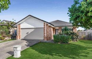 Picture of 67 Benjamina Drive, Redbank Plains QLD 4301