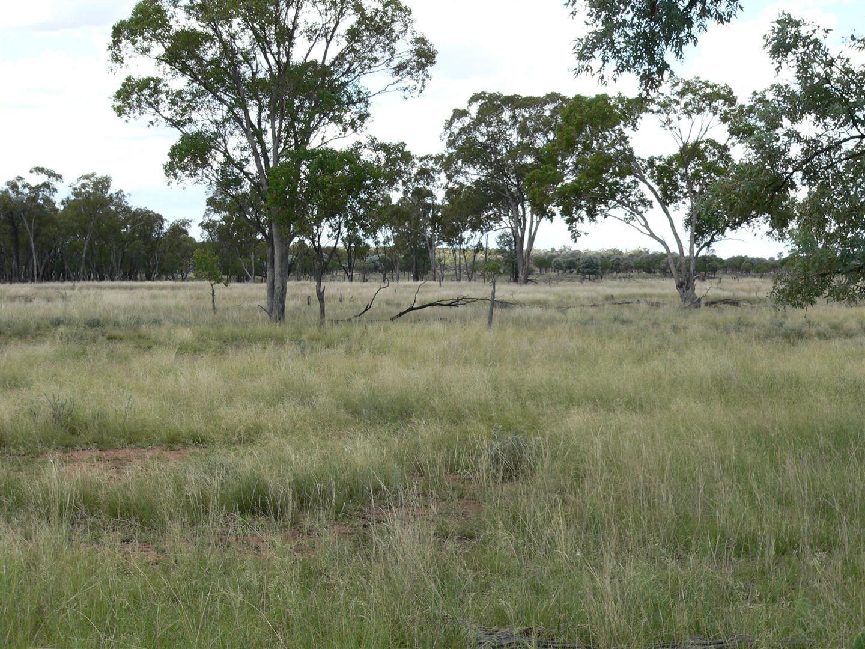 . Kandimulla, Mitchell QLD 4465, Image 1