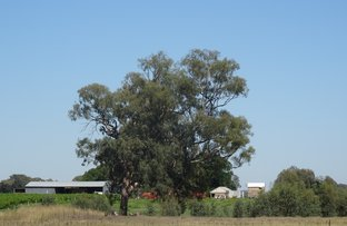 Picture of 2035 Wangaratta-Whitfield Road, Moyhu VIC 3732