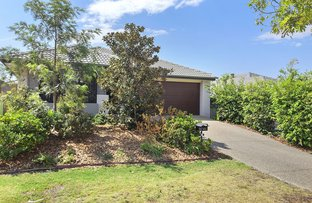 Picture of 21 Hollanders Crescent, Ormeau Hills QLD 4208