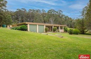 Picture of 575 LARRYS MOUNTAIN ROAD, Mogendoura NSW 2537