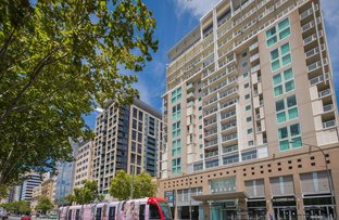 Picture of 1115/96 North Terrace, Adelaide SA 5000