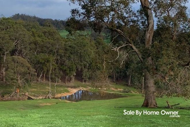 Picture of Lot 59 King Spring Rd, THOMSON BROOK WA 6239