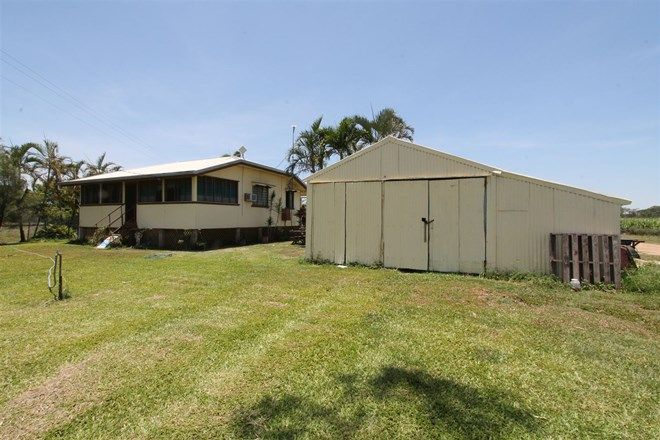 Picture of 584 Kilrie Road, JARVISFIELD QLD 4807