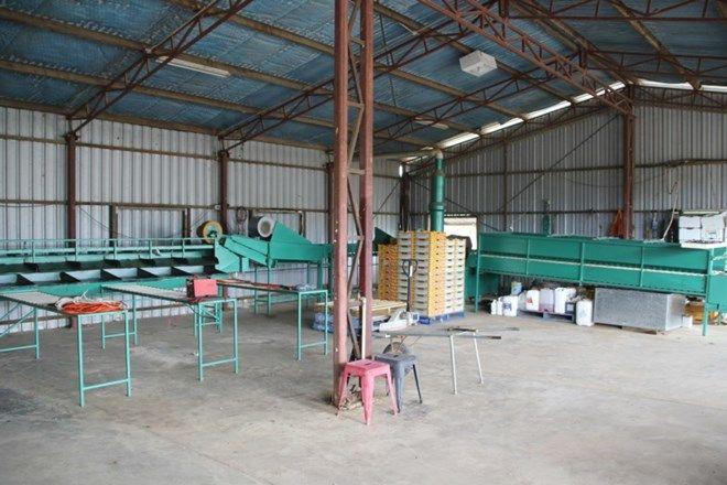 Picture of 140 De Lacy Road, DIMBULAH QLD 4872