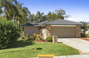 9 Muttonbird Street, Calamvale QLD 4116