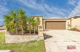 Picture of 164 St Stephens Crescent, Tapping WA 6065