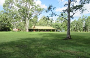 Picture of 3096 Beaudesert - Beenleigh Rd, Birnam QLD 4285