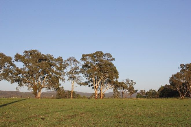 Picture of Lot 3 Martindale Estate, PORTLAND NSW 2847