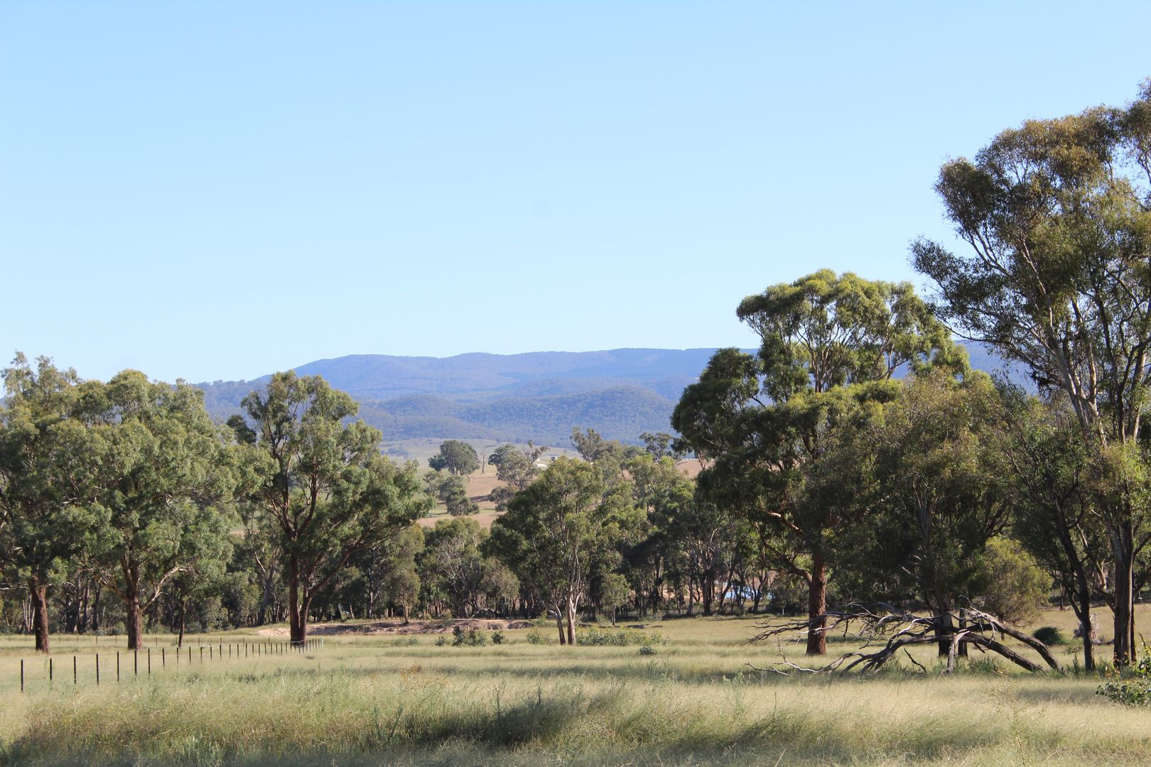 Lot 125, 1488 Mutton Falls Road, O'Connell NSW 2795, Image 2