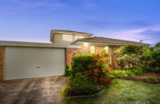 Picture of 134 Brandon Park Drive, Wheelers Hill VIC 3150