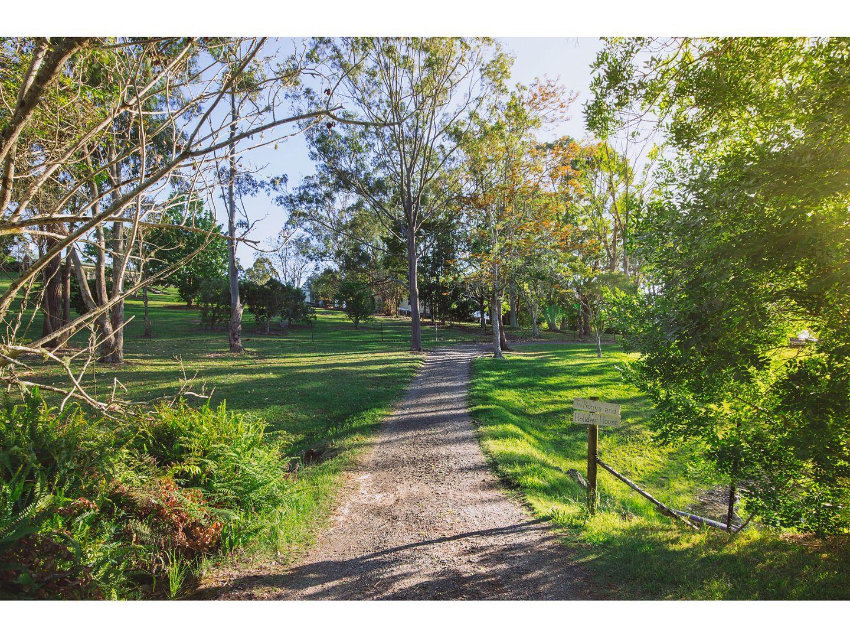 158 Teutoberg Avenue, Witta QLD 4552, Image 2