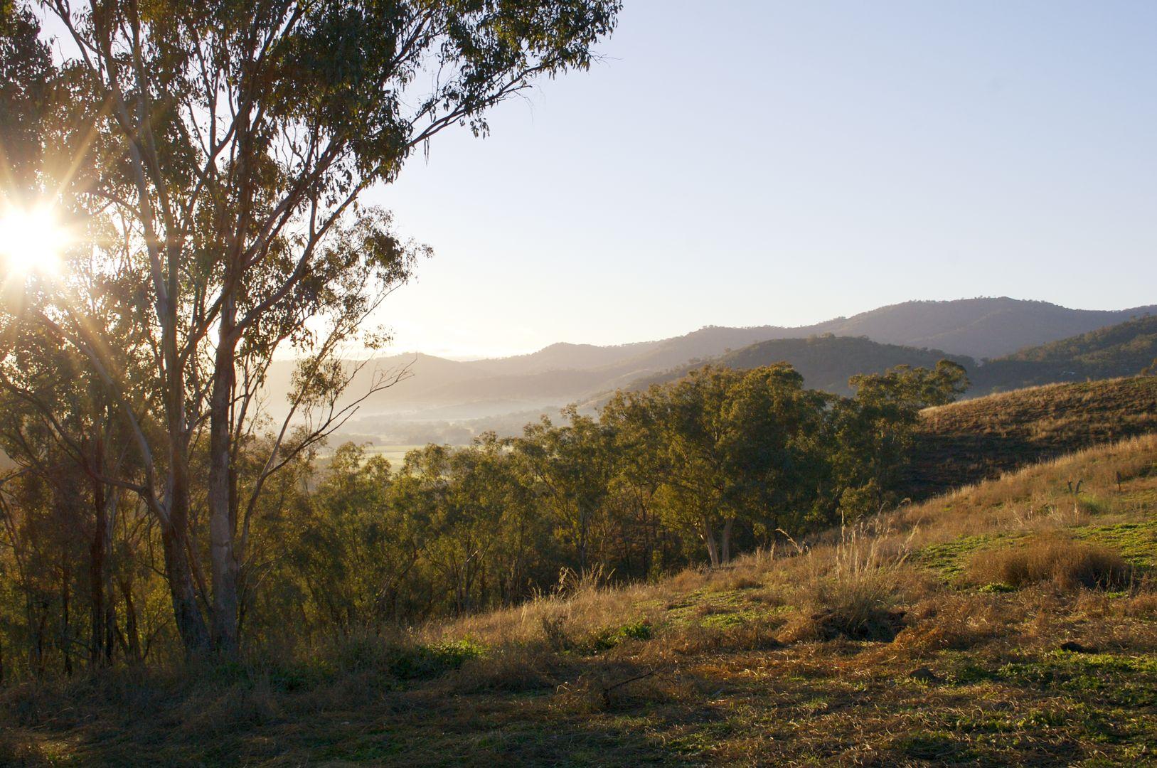 Tamworth NSW 2340, Image 2