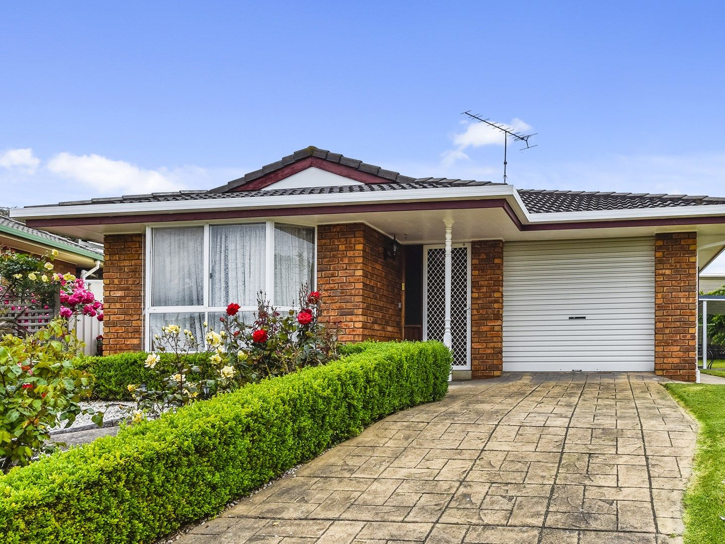 13 Shaughnessy Court, Mount Gambier SA 5290, Image 0