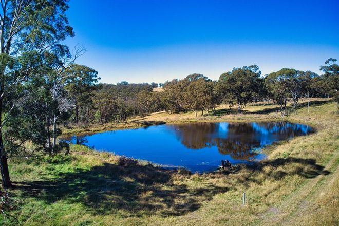 Picture of L2- 200 ha/3054 Nullo Mountain Road Nullo Mountain, RYLSTONE NSW 2849