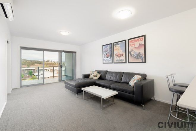 Picture of 234/30 Philip Hodgins Street, WRIGHT ACT 2611