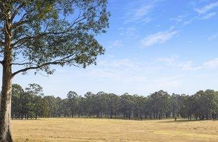 Picture of 42 Big Ridge Lane, Sedgefield NSW 2330