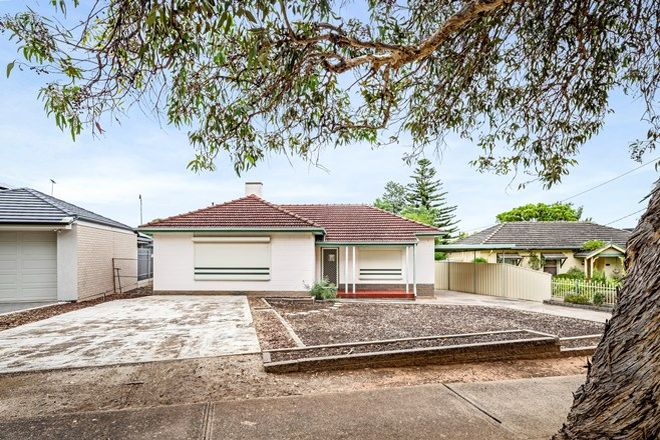 Picture of 11 Denial Avenue, SEAVIEW DOWNS SA 5049