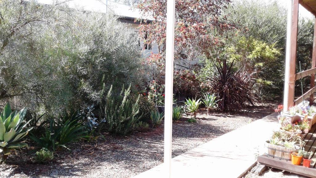 4 Mount Street, Melrose SA 5483, Image 1