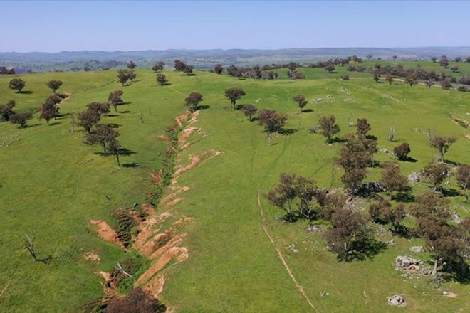 Picture of 3314 JUGIONG ROAD, JUGIONG NSW 2726