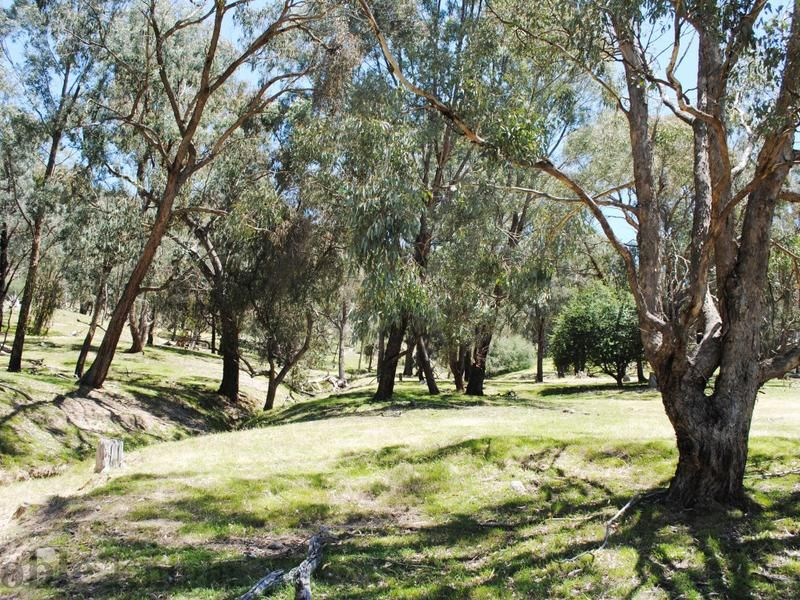 Lot 6 Drakes Hill Road, Mansfield VIC 3722, Image 1