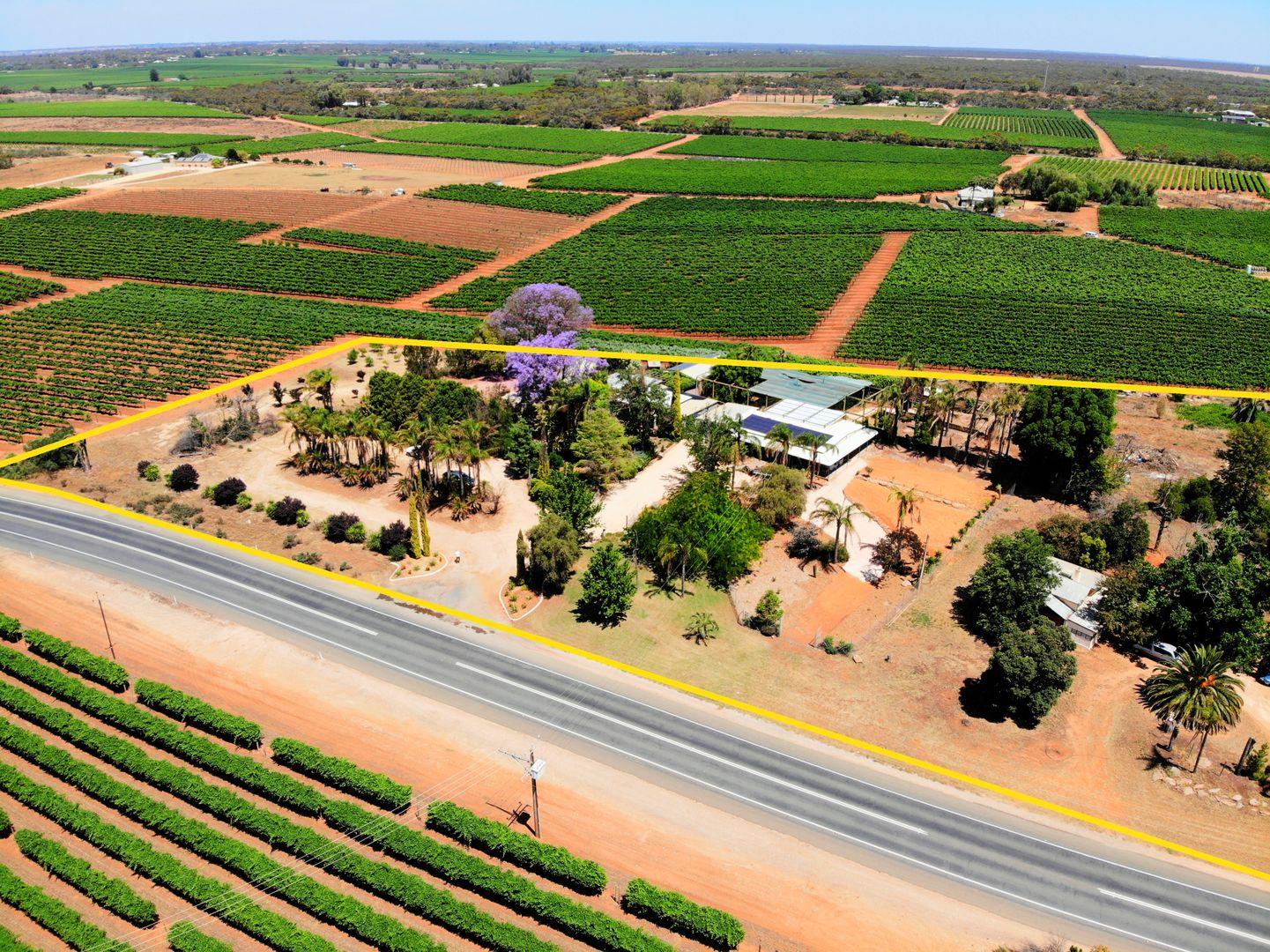 142 Old Sturt Highway, Barmera SA 5345, Image 2