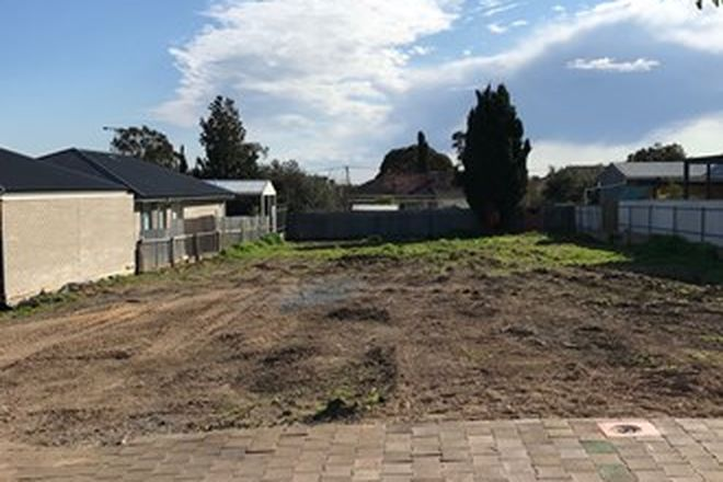 Picture of 56 Quinlan Avenue - Allotment 301, ST MARYS SA 5042