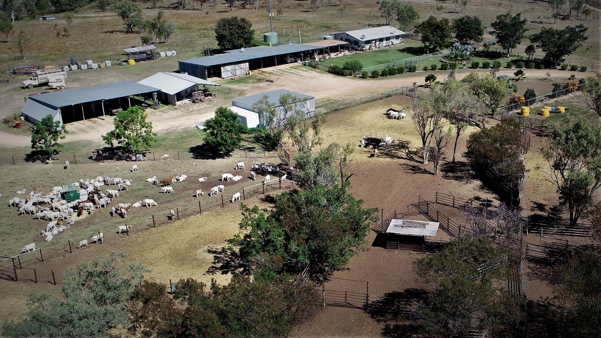 3661 Bulleringa Road, Fossilbrook QLD 4871, Image 0