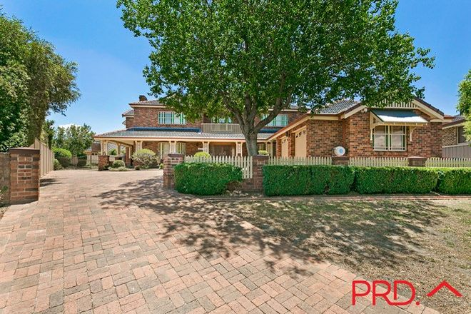 Picture of 20 The Terrace, TAMWORTH NSW 2340