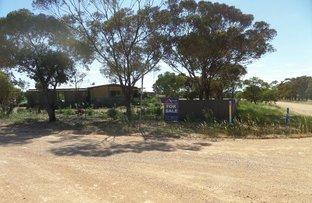 Picture of 15 Lake View Road, Lake View SA 5555