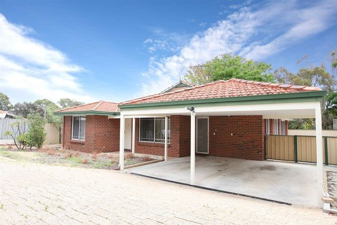 Picture of 3/5 Fort Street, MORLEY WA 6062