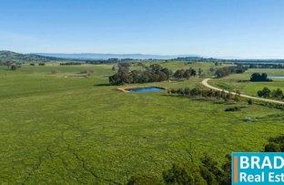 Picture of Lot 4/360 Bushs Lane, Murrumbateman NSW 2582