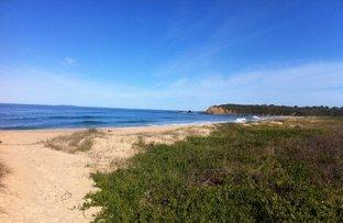 Picture of Bodalla NSW 2545