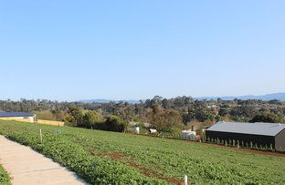Picture of Lot 2416 Bexley Blvd, Drouin VIC 3818