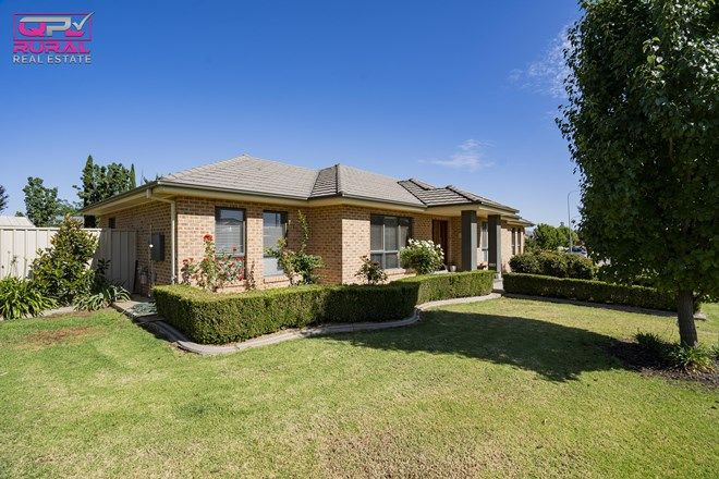 Picture of 1 Kindred Place, LEETON NSW 2705