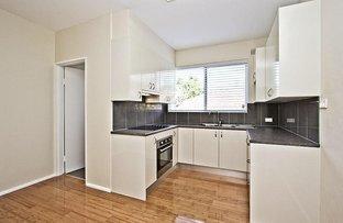 Picture of 1/48 McKern Street, Campsie NSW 2194