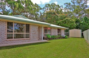 Picture of 12 Redwood Court, Landsborough QLD 4550