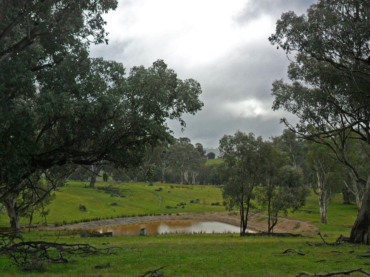 2,38,39/1701 Adelong Road, Tumblong NSW 2729, Image 0