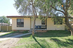 Picture of 3 Bingham Place, Tolland NSW 2650