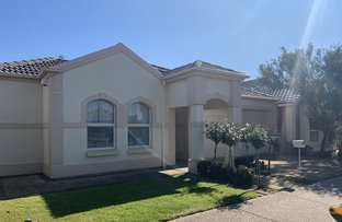 Picture of 5 Prion Circuit, Mawson Lakes SA 5095